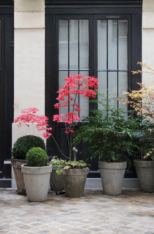 Herbstgartenideen U2013 Tipps Für Einen Schlichten Und Modernen Garten