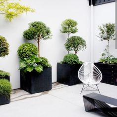 herbstgartenideen. Black Bedroom Furniture Sets. Home Design Ideas