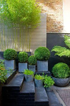 Herbstgartenideen - Tipps für einen schlichten und modernen Garten.