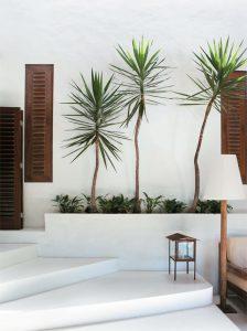 minimalist garden design tips, Design im Garten, Aussenarchitektur, Gartendesign