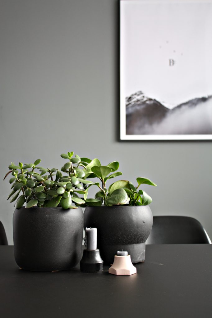 DINING ROOM UPDATE & ALTERNATIVE TO FLOWERS FOR THE TABLE DECO TIP
