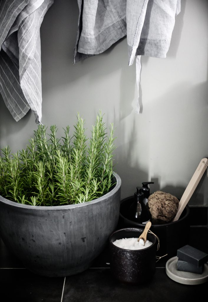 Creating a Wellness Oasis at Home