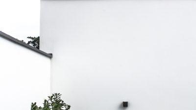 Garten Notizen – Unsere Hinterhofgeschichte & neuesten Funde in modernen Gartenzubehör